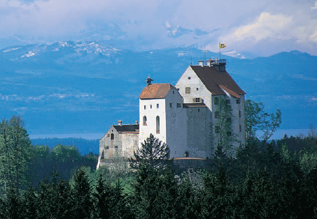 Castle of Waldburg